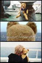 En gammel bamses fortælling