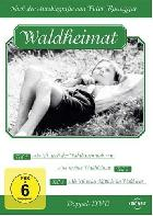 Waldheimat (2): Aus meiner Waldheimat